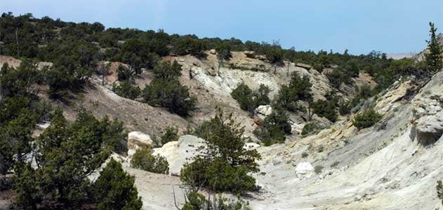 A view of the outcrop