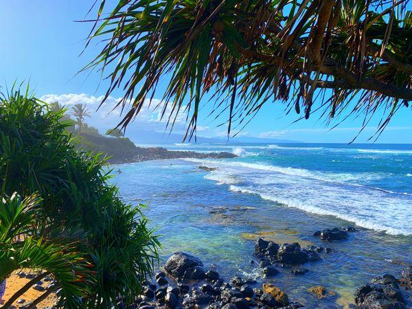 Beauty of Maui thumbnail
