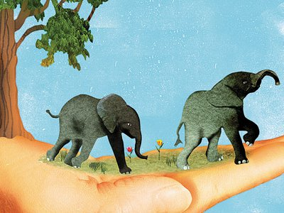 Love, Life, and Elephants: An African Love Story by Daphne Sheldrick