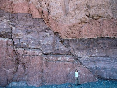 A person stands in front of a fault in Utah. Better understanding how rocks behave under stress and along faults like this could help geologists more accurately identify places at risk of earthquakes.