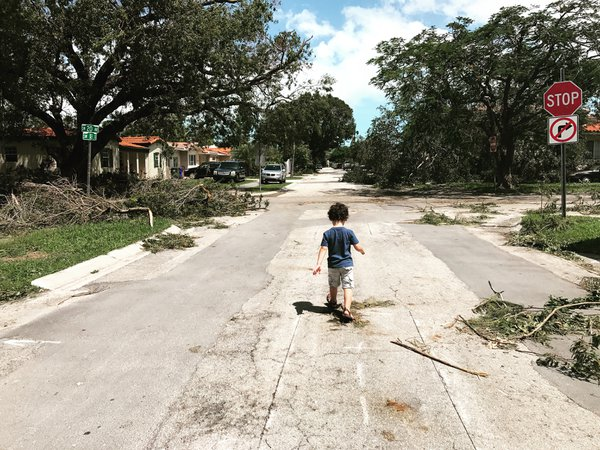 My Post-Irma Street thumbnail