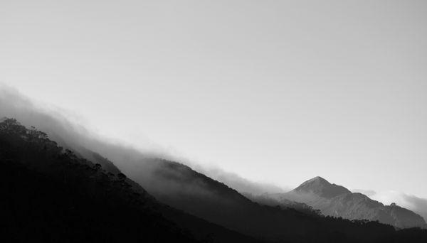 The Fog Creeps In thumbnail