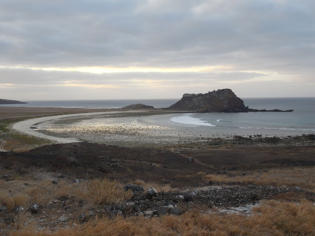 Retracing Beebe's steps on Clarion Island. Photo: Daniel Mulcahy