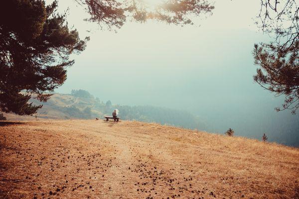 A foggy morning in Tusheti. thumbnail