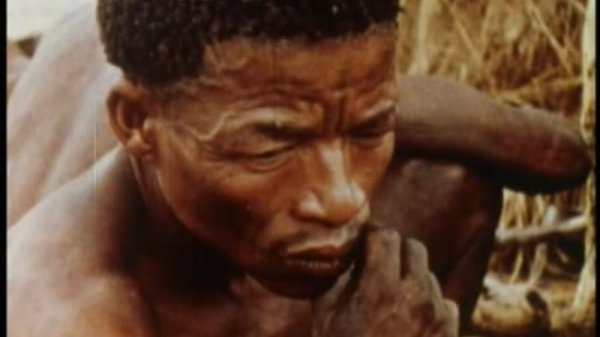 Preview thumbnail for The John Marshall Ju/'hoan Bushman Film and Video Collection, 1950-2000