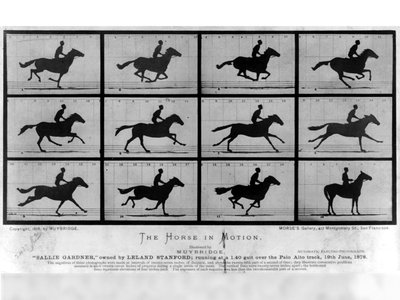 In June of 1878, just a few years after he was acquitted for murder, Eadweard Muybridge made history at a racetrack in Palo Alto, California.