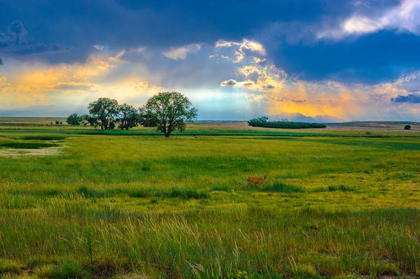 Sunset on the Rockies thumbnail