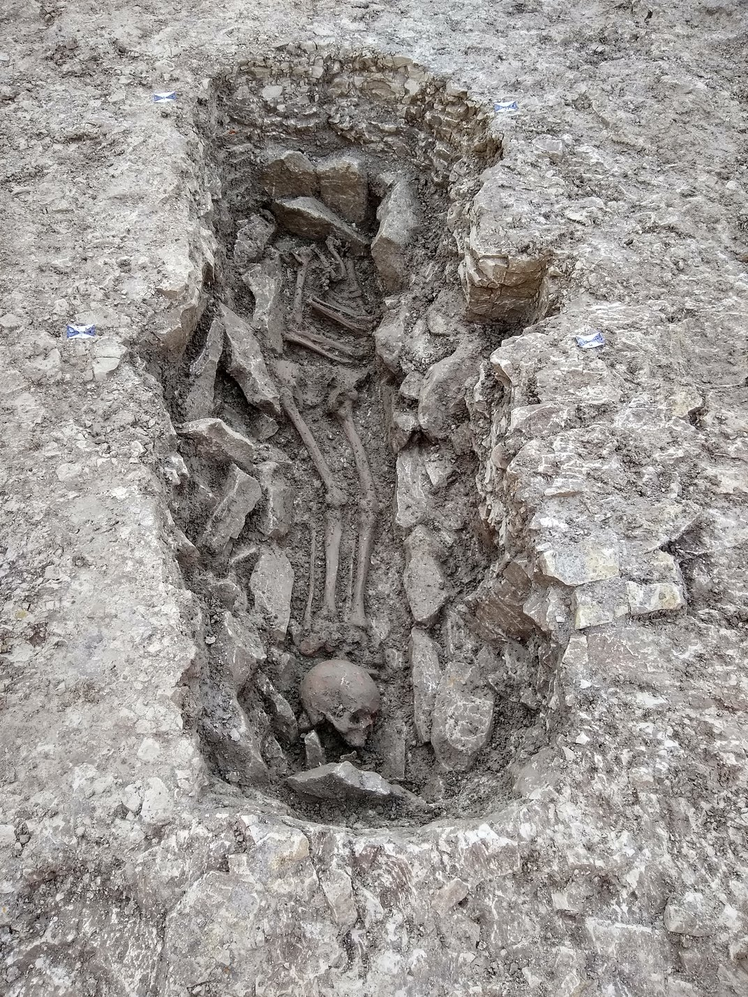 U.K. Construction Finds Neolithic Skeletons That May Have Been Victims of Human Sacrifice