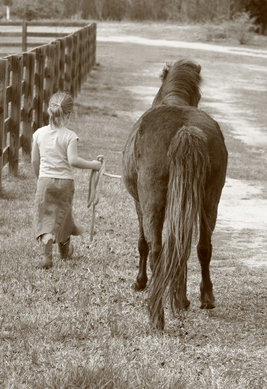 A girl and her pony. thumbnail