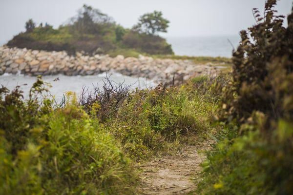 Path to the Knob thumbnail