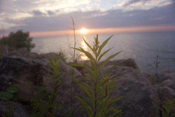 Sunset on the Lake thumbnail