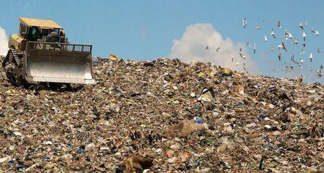 trash production