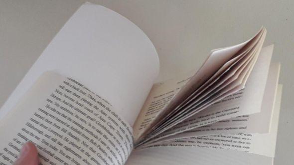 _107850426_ripped_book_nickrogers.jpg