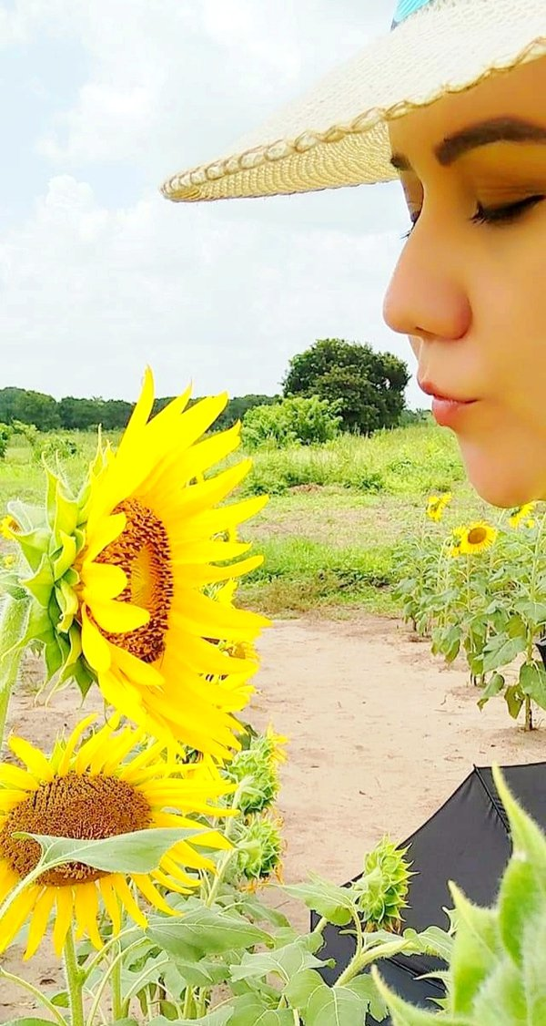 the sunflowers and me thumbnail