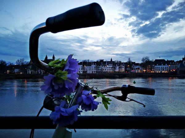 Maastricht city thumbnail