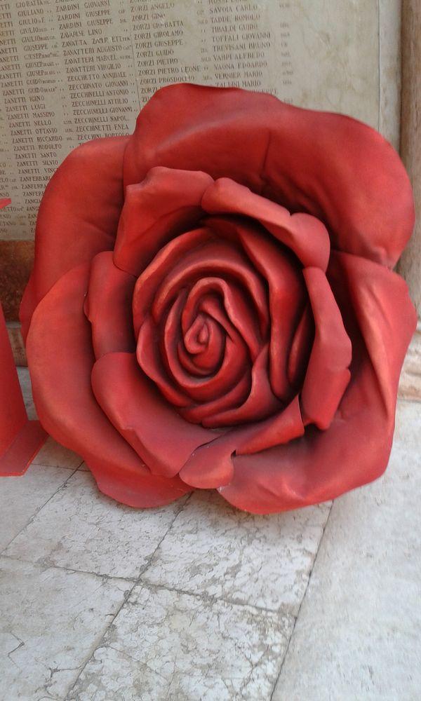 Verona lyric rose thumbnail