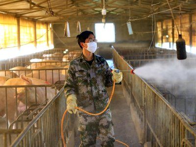 A worker disinfects a hog pen in Suining in southwest China's Sichuan province in February 2020.