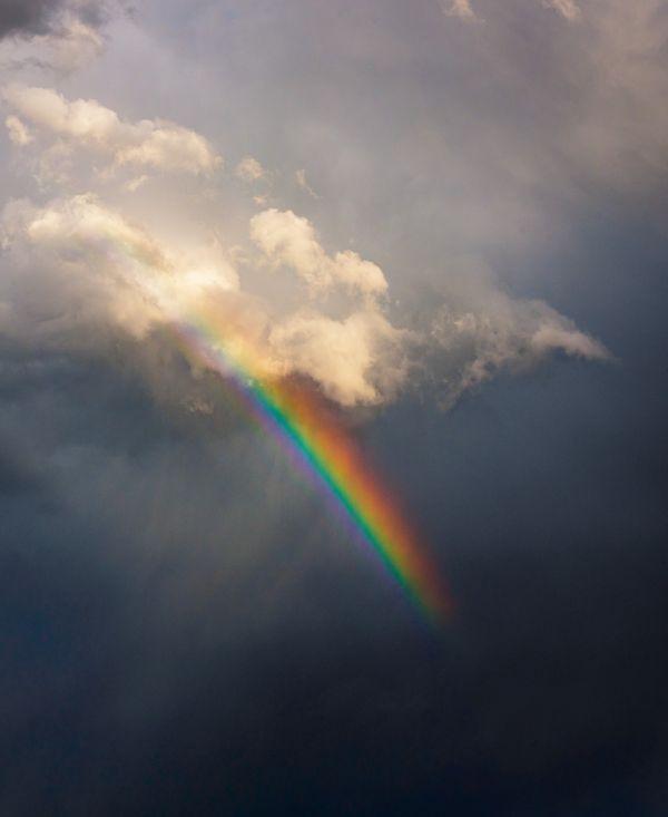 raining rainbows thumbnail