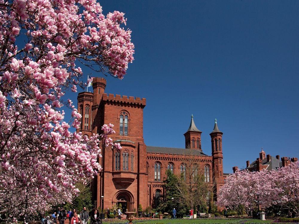 Smithsonian Castle in spring