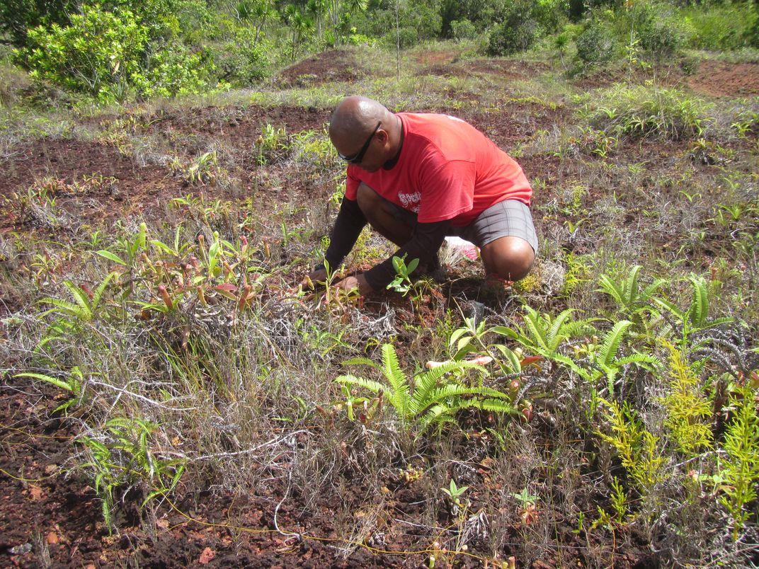 Man kneeling on grass