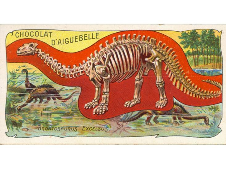 Back to Brontosaurus? The Dinosaur Might Deserve Its Own Genus After All
