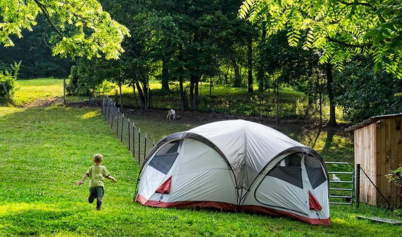 summer camping-main.jpg