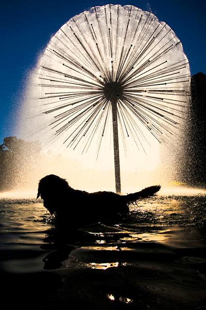 Gus S. Wortham Memorial Fountain