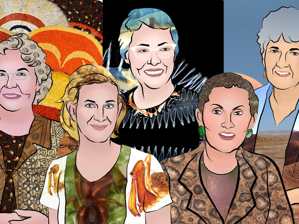 Past and present female scientists at the Smithsonian's National Museum of Natural History have advanced humankind's understanding of the natural world and its place in it. L to R: Adrienne Kaeppler, Hannah Wood, Marian Pettibone, Sorena Sorenson and Kay Behrensmeyer. (Smithsonian Institution).