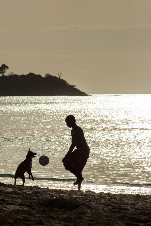 A Boy, A Dog, A Soccer Ball thumbnail