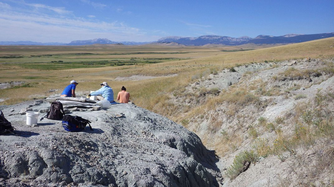 Want to Dig For Dinosaur Bones? Join the Pros at These Spots
