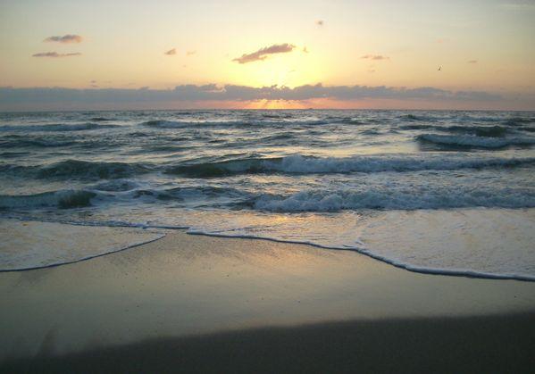Break of Dawn in the Sunshine State thumbnail