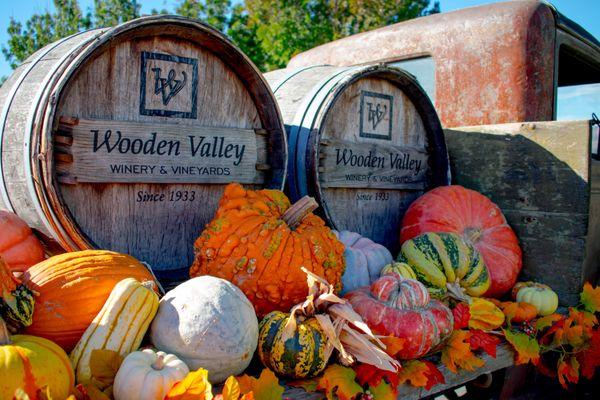 Fall Harvest thumbnail