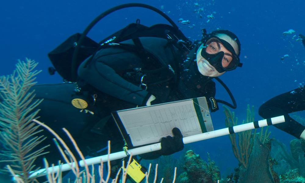 Diver underwater taking notes on a clipboard