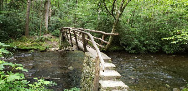 Foot bridge across creek in Cataloochee in North Carolina. thumbnail