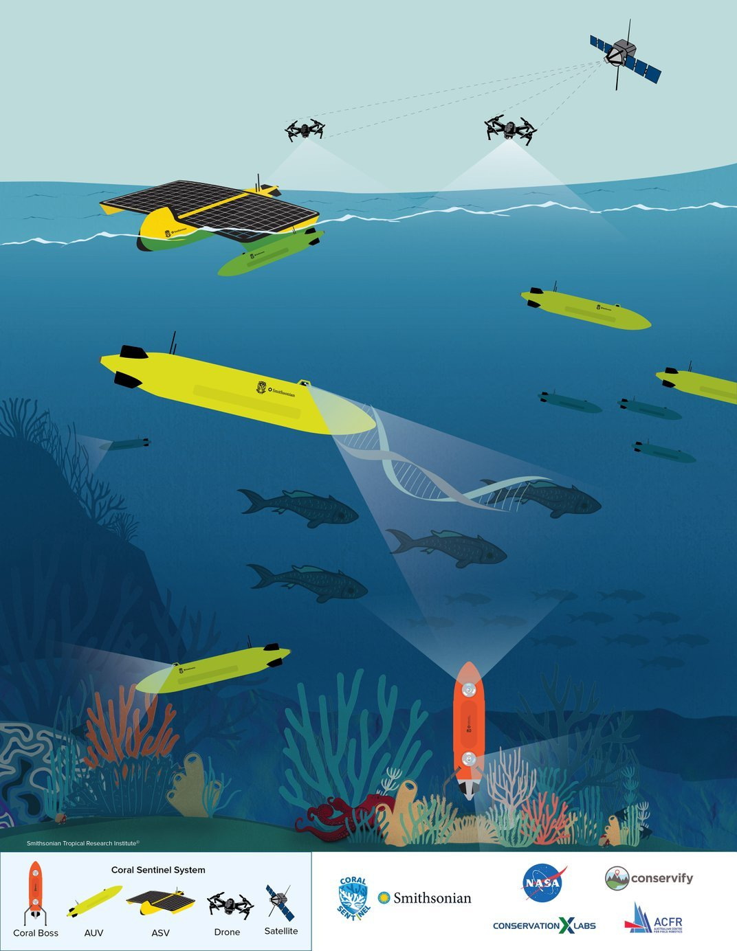 Illustration of underwater robots and drones surveying coral