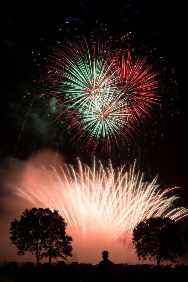 Lonely Fireworks Spectator thumbnail