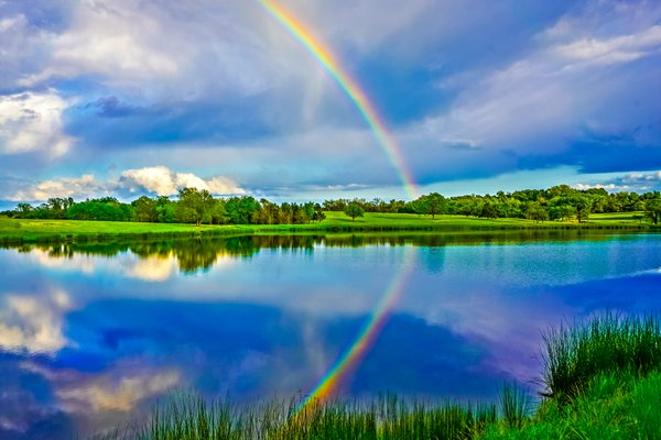 Rainbow while fishing our family pond thumbnail