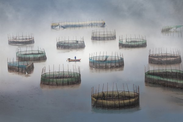 Fisherman and his catches thumbnail