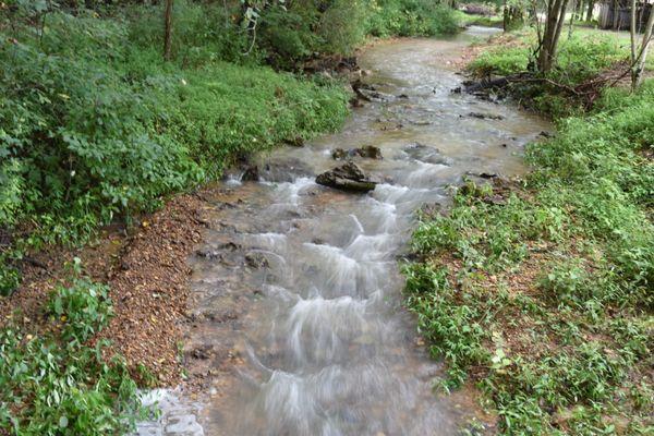 Kentucky Creek on the Farm thumbnail