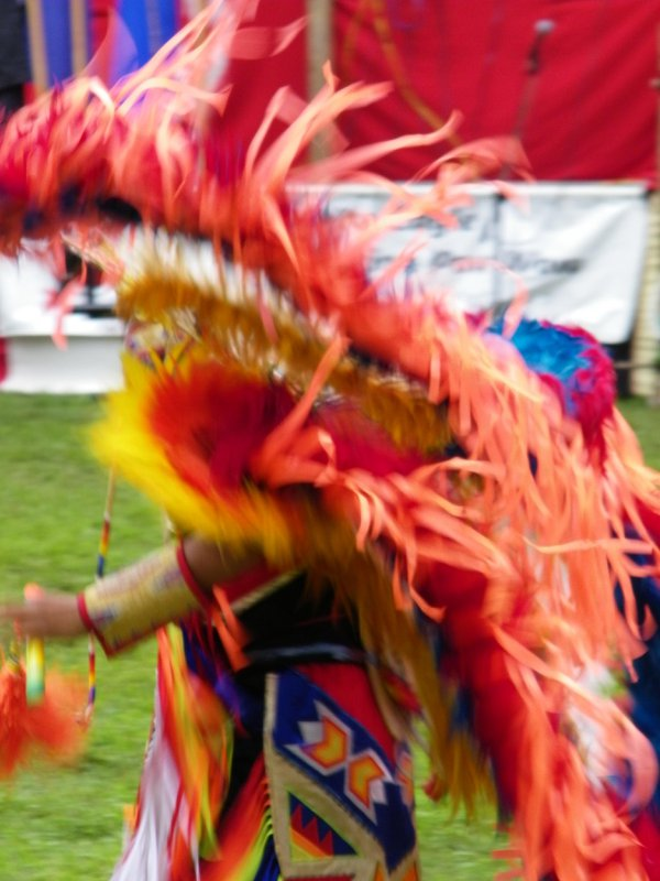 Native American Feather dancing at a Pow Wow thumbnail