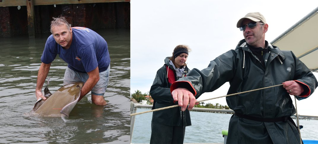 Left: Man in water holding cownose ray. Right: Man and woman on boat.
