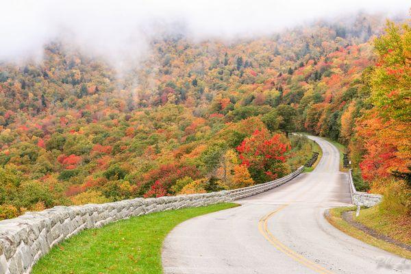 Early morning at Blue Ridge Parkway  thumbnail
