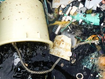 Debris recovered from the Garbage Patch