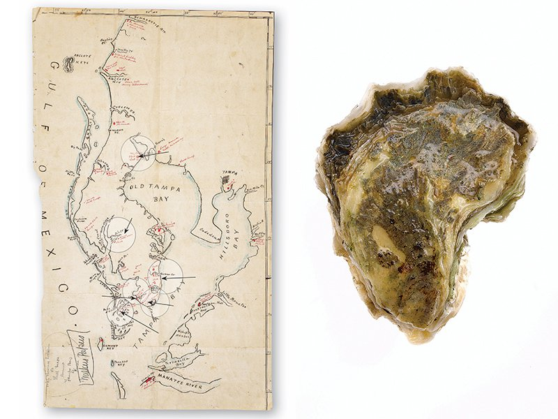 left, map of Tampa region, and right, a shard of pottery