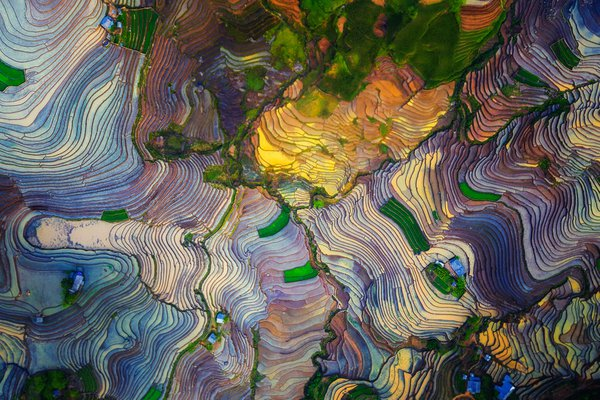 The colors of terraced fields thumbnail