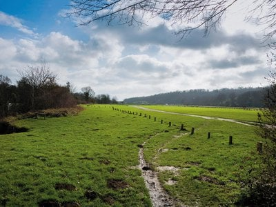 Runnymede meadow in Surrey, England, is the site of historic Magna Carta negotiations.