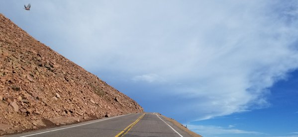A bird's path to nowhere while getting at the top of Pikes Peak thumbnail