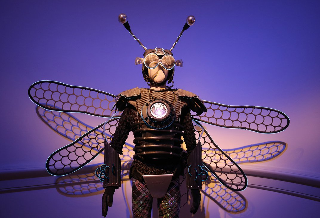 A photograph of a costume that looks like a human insect.