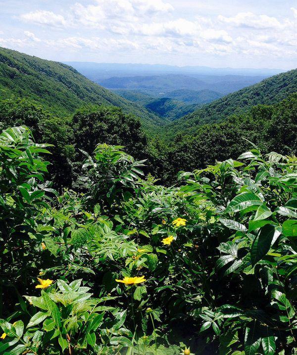 Blue Ridge mountains thumbnail