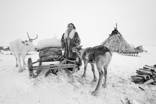 Lida and the reindeer thumbnail